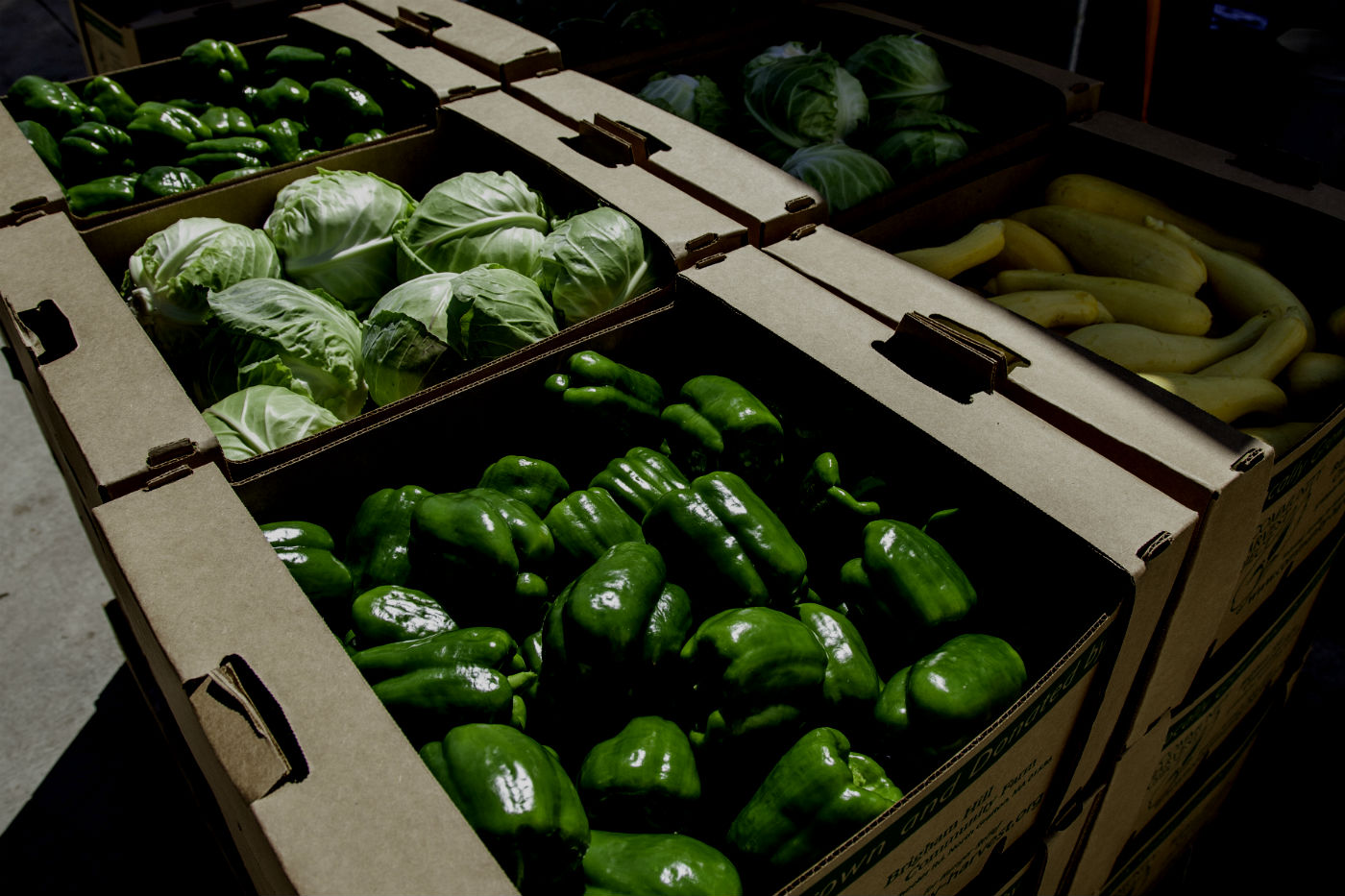 Boxes-of-pepper-cabbage-squash