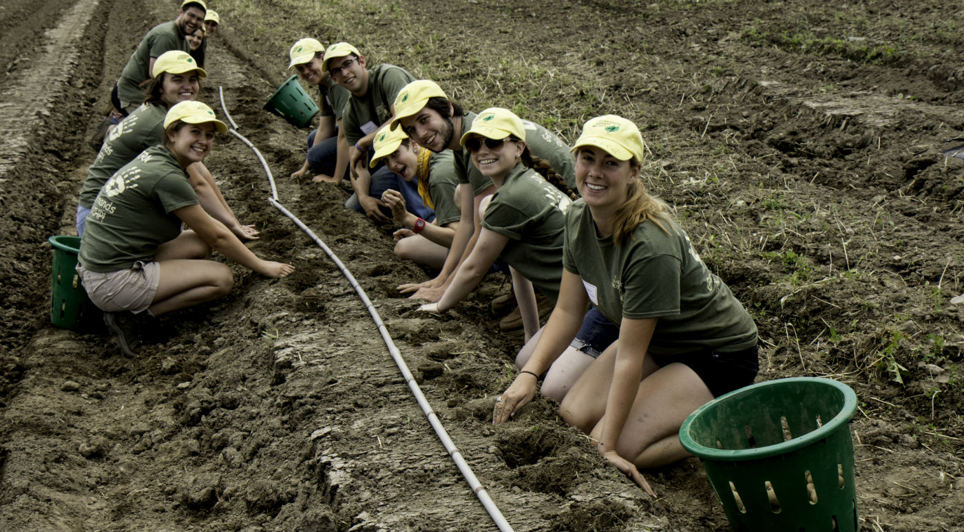 Interns-planting-potatoes